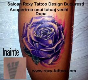 modele tatuaje acoperire tatuaj vechi saloane roxy
