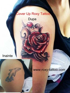 cover+trandafir_delfin_roxy